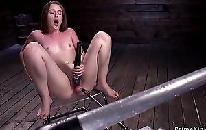 Laconic tits solo pet fucking gadget